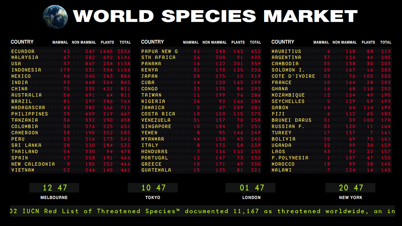 World Species Market. Debbie Symons