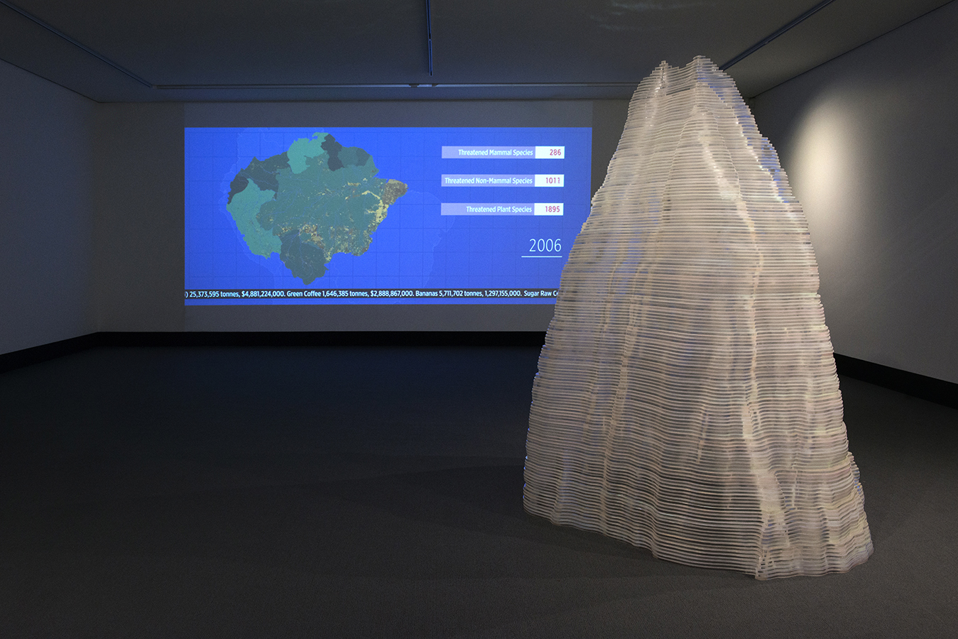 5. Debbie Symons and Jasmine Targett - The Politics of Perception - Installations View. Latrobe Regional Gallery. Artworks Shown - Back wall - D.Symons- Amazonia. Right - J.Targett - Blind Spot.