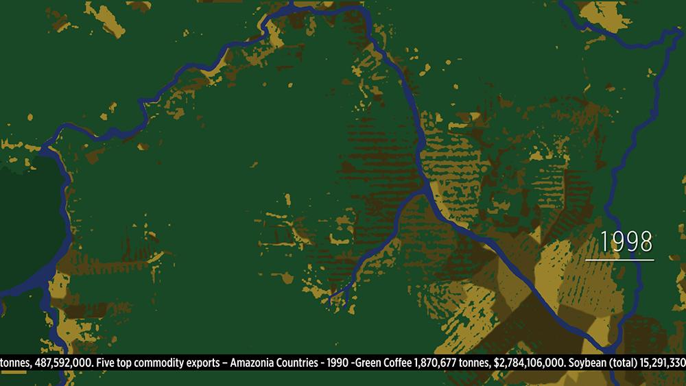 Amazonia. Debbie Symons