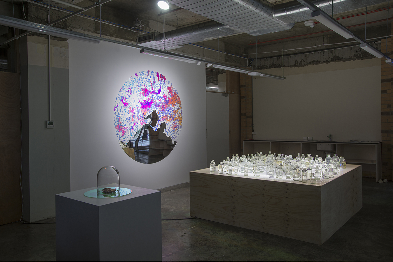 The Catchments Project - Final Installation view Artworks Shown - Wall - Making Water Visible. Light Box - The Water Harvest. Plinth - Getting Busy - Debbie Symons & Jasmine Targett