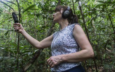 Labverde Residency: Amazon Rainforest
